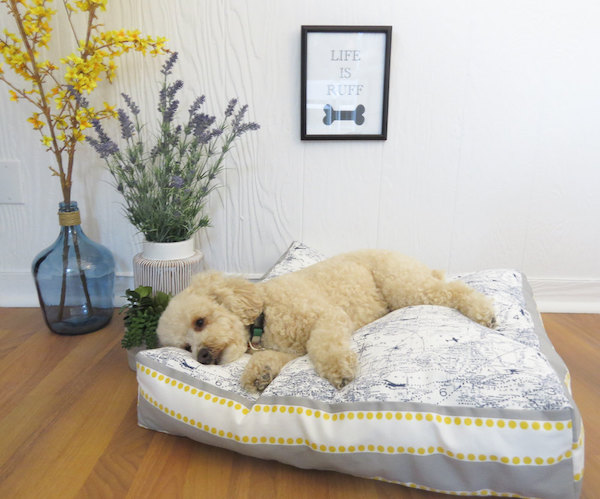 best-dog-beds