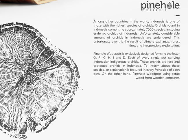 Pinehole-Woodpots