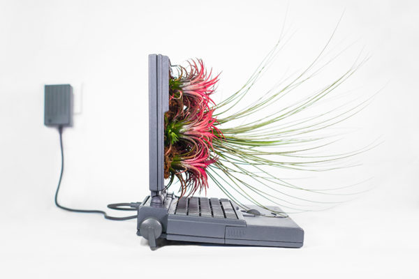 Artist Turns Old Apple Computers Into Plant Pots-16